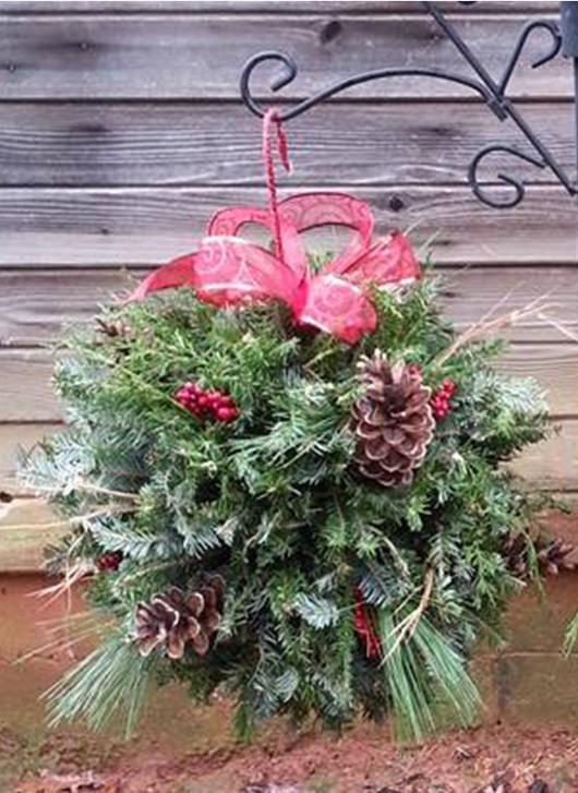 Wildwood Christmas Tree Farm | Trees